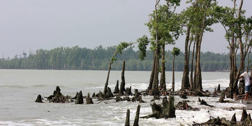 Katka-Sundarban1