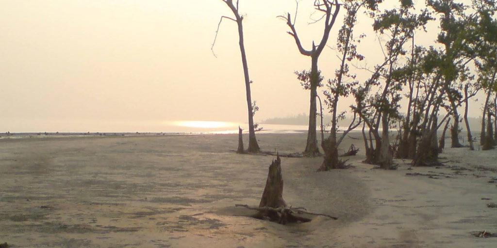 Katka-Sundarban2